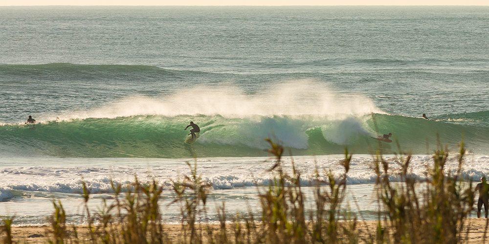 surf guide costa da caparica - champion surf guide (3)