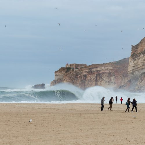 surf guide nazaré - champion surf guide (4)